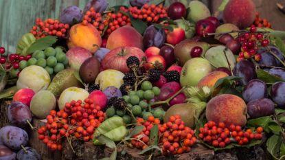 Soutěž: Podzim na talíři 2016