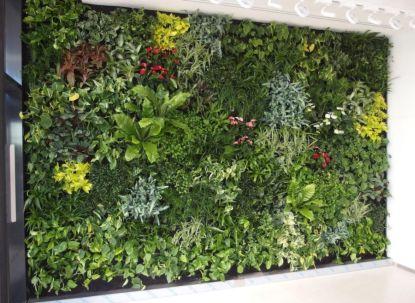 Zelené stěny v interiéru pro zdravější i hezčí bydlení