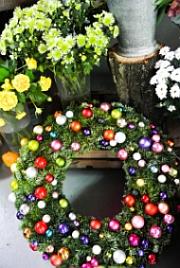Foto: www.rosebud.cz