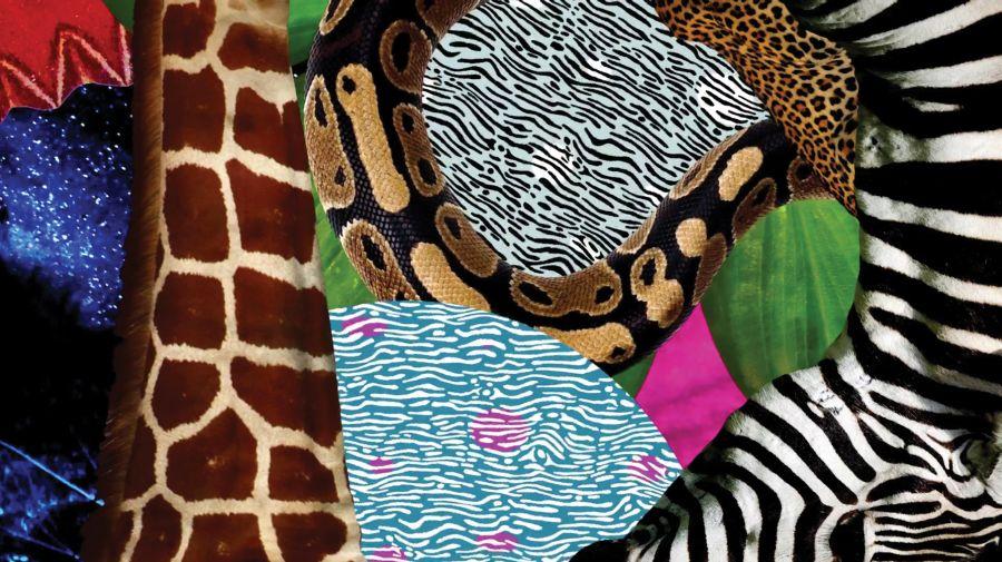 http://cdn.bydleni.com/rimport/jv/1511/thumb_trendy_mixolofy.jpg