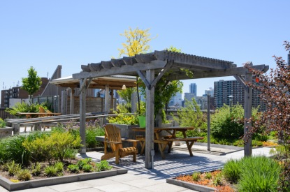 Střešní zahrada je krásná i užitečná