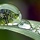 Ekologické hospodaření s vodou díky dotaci Dešťovka