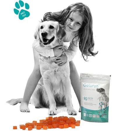 Soutěž o kloubní výživu pro psy Geloren dog a tričko Aktivní zvíře