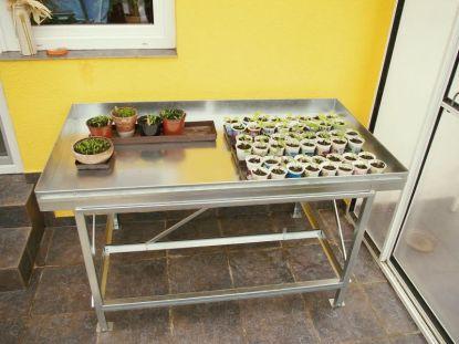 Pěstební stůl - pěstování na jednom místě