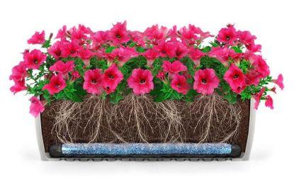 Představujeme Hydrobox® - revoluční novinku v zavlažování rostlin
