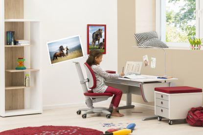 Zdraví nekoupíte. Kvalitní rostoucí nábytekMOLL prozdravé sezení koupit můžete