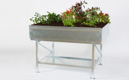 Stolní záhon: Zahradníkem i bez zahrady