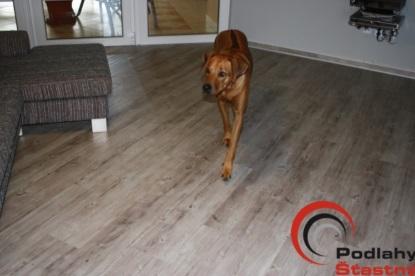 Teplá a praktická podlaha: Vinylcork