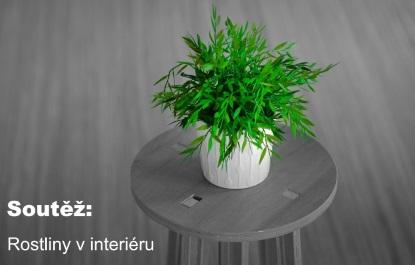 Soutěž: Rostliny v interiéru
