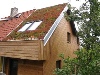 Fenomén zelených střech. Přírodě vrátíme dluh a ještě si zajistíme komfortní bydlení
