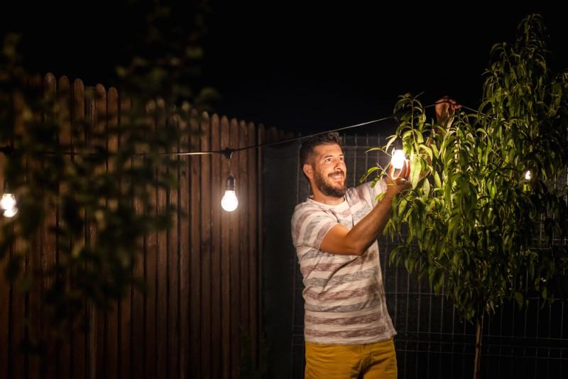 {Dan Rentea} / Shutterstock.com