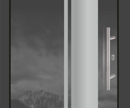 Designové sklo-hliníkové vchodové dveře