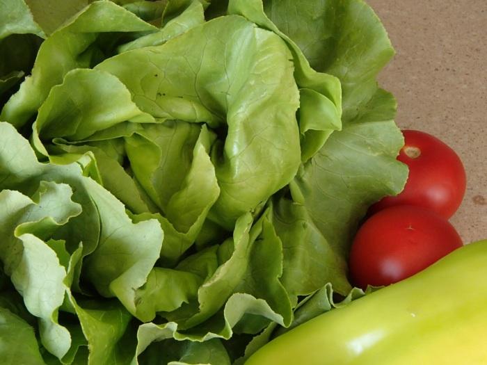 https://cdn.bydleni.com/rimport/img/2013_06/thumb_zelenina_salat.jpg