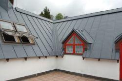 Klenotem mezi plechovými střechámi je krytina Seamline.  Vysoce tvárný plech určený i na velmi nízké sklony a obloukové střechy, vhodná na moderní i historické budovy, bezúdržbová, s vysokou životností a bohatou škálou barev.  Drážková krytina Seamline nachází uplatnění mimo jiné v horských oblastech, kde jsou na střechy kladeny zvýšené klimatické nároky, nápor sněhu, výrazné střídání teplot apod.  Důkazem toho, jak náročným podmínkám krytina Semaline umí odolávat je stříbrná falcovaná střecha restaurace na švédském pobřeží.