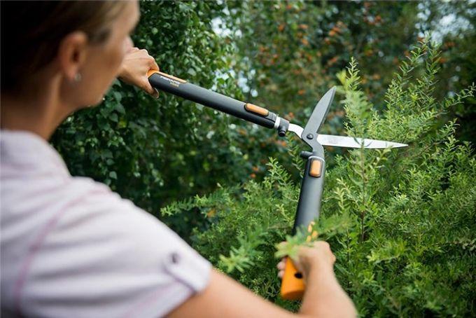 Také na jaře je vhodný čas pro zastřižení živého plotu, stromečků a keřů. Dejte jim krásný tvar díky nůžkám na živý plot.