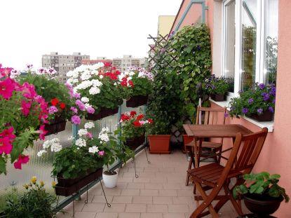 Klepete kosu na balkoně? Zbytečně, můžete tam mít léto po celý rok