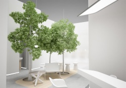 První živé stromy v českém obchodním centru navrhla architektka Vera Hampl